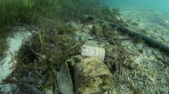 Underwater trash lying in ocean tidal mark Stock Footage