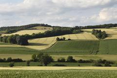 Rural landscape near grossmugl, weinviertel, wine quarter, lower austria, aus Stock Photos