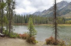 lake, grand teton national park, wyoming, usa - stock photo