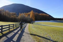lonely walk of a woman in an autumnal landscape, mieminger plateau, tyrol, au - stock photo