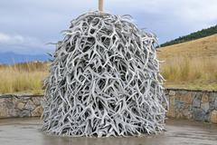 Stack of deer antlers, national bison range, moiese, montana, usa Stock Photos