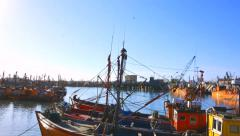 Fishing and Crew Boats in Mar del Plata port. timelapse Stock Footage