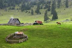 sheepfold, bihor mountains, parcul natural apuseni, romania, europe - stock photo