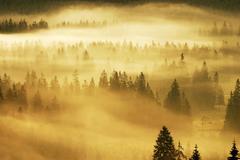 mist, sesul garzii, bihor mountains, parcul natural apuseni, romania, europe - stock photo