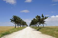 isolated unpaved road heading straight to the horizon through the fields and  - stock photo