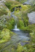 mountain stream on the eastern side of the mount hood volcano, cascade range, - stock photo
