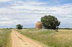 isolated unpaved road heading straight to the horizon through the fields, cue - stock photo