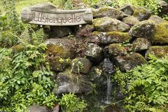 Ulsterquelle, ulster spring, kesselrain, rhoen mountains biosphere reserve, h Stock Photos
