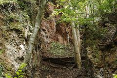 Basalt fissure of tieschen, east styrian volcano area, styria, austria, europ Stock Photos