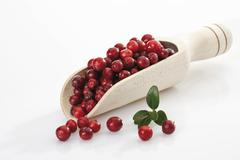 Lingonberry, cowberry or foxberry in a wooden scoop Stock Photos