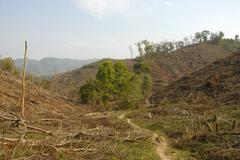 environmental damage, deforestation in the highlands, xieng khuang province,  - stock photo