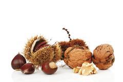 persian walnuts (juglans regia) and chestnuts (castanea) - stock photo