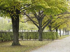Hofgarten park, munich, bavaria, germany, europe Stock Photos