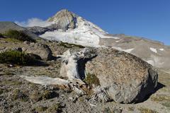 Boulder on the eastern side of the mount hood volcano, cascade range, oregon, Stock Photos
