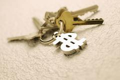 keyring with dollar sign and keys - stock photo