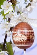 Easter egg with cherry blossoms Stock Photos