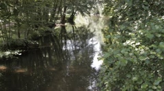 Calm River - Ruhiger Fluss - River Fluss Felda Thüringen Thuringia Stock Footage
