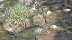 River Rapids Close Up - Stromschnelle - Fluss Felda Thüringen Thuringia Stock Footage