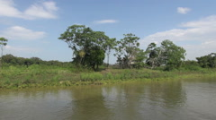 Brazil Amazon backwater near Santarem bank scattered trees and house on stilt Stock Footage