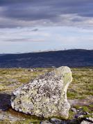 rock in stroplsjodalen valley, dovrefjell national park, norway, scandinavia, - stock photo