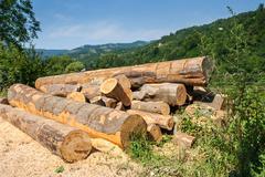 Lumber in mountains Stock Photos