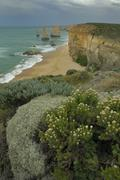 the 12 apostles on the great ocean road, victoria, australia - stock photo