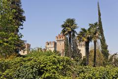 Scaligercastle build in the 9.th century and palm trees, lazise, lake garda,  Stock Photos