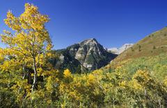 Indian summer at mount timpanogos, wasatch range, utah, usa Stock Photos
