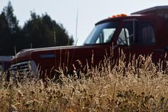 Old truck in the grass Stock Photos