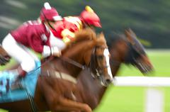 Jockeys at a gallop race, hosre race, racehorses in motion, detail Stock Photos