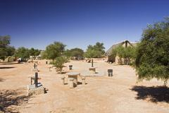 Stock Photo of campsite twee rivieren, kgalagadi transfrontier park, kalahari gemsbok park,