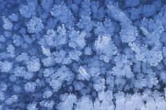 Stock Photo of hoar frost crystals