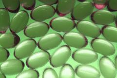 Stock Photo of many similar capsules