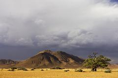 Stock Photo of upcoming thunderstorm with mountains and a tree. tiras mountains, farm koiima