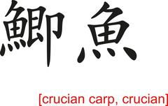Chinese Sign for crucian carp, crucian - stock illustration