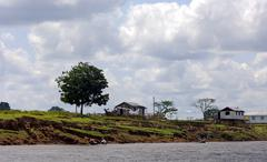 Simple settler houses in the amazonas region, brazil Stock Photos