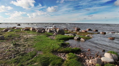 Russia. Autumn sandy coast of the Gulf of Finland Stock Footage