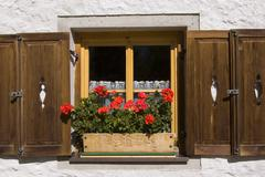 Window with flower at luckner house at gross glockner, kals, easttyrol, tyrol Stock Photos