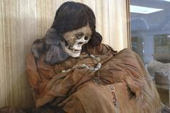 Dressed skeleton in the museum from san pedro de atacama chile Stock Photos