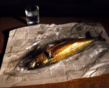 Stillife with mackerel, aquaqvit and newspaper. Stock Photos