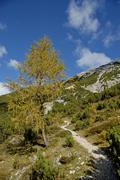 way of halleranger alm to suntiger, mountains karwendel, tyrol, austria - stock photo