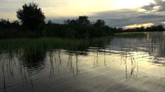Amazon grassy margin of lake at sunset Stock Footage
