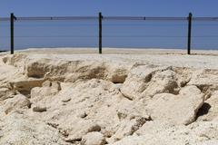 Protective fence, eden state project, isthmus, shark bay, shell beach, wester Stock Photos