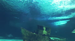 Underwater Shark and Boat Stock Footage
