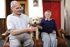 Elderly residents petting a dog at a nursing home Stock Photos