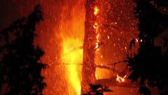 Tree involved in fire at night with flames and sparkles Stock Footage