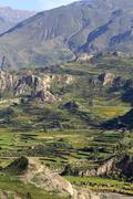 Stock Photo of South America, Peru, View to Colca Canyon