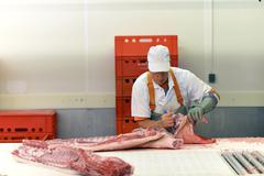 Processing of pig carcasses in a slaughterhouse - stock photo