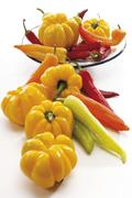 Yellow peppers or capsicums and orange, red and yellow hot peppers Stock Photos