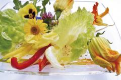 Stock Photo of salad of edible flowers including pansy, nasturtium, zucchini flower, yellow